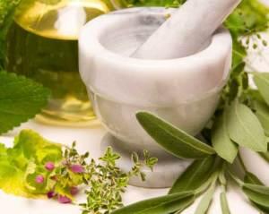 banner-herbal-medicine